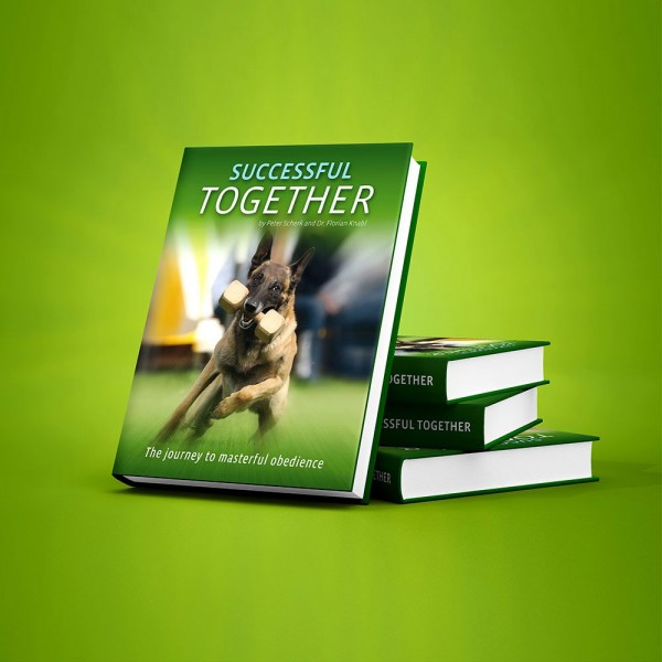 Book - Successful Together (English Version)